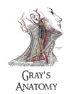 Gray Anatomy Delux Edition