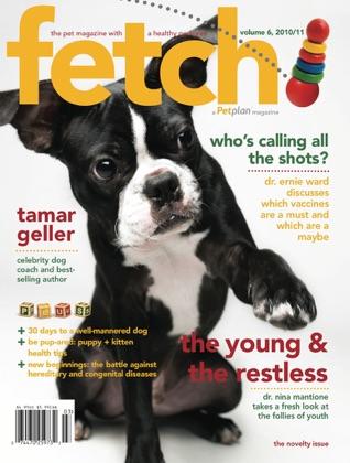 fetch!magazine book cover