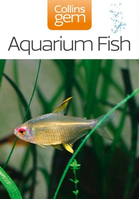 Aquarium Fish