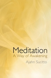 Meditation A Way Of Awakening