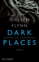Gillian Flynn - Dark Places - Gefährliche Erinnerung artwork