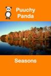 Puuchy Panda Seasons