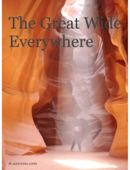 The Great Wide Everywhere