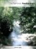The Rainforest Awakenings