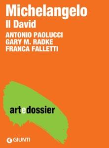 Michelangelo. Il David da Antonio Paolucci, Gary M. Radke & Franca Falletti