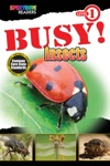 Busy Insects