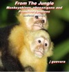 From The Jungle Monkeyshines Shenanigans And Primitive Opinions 2nd Edition