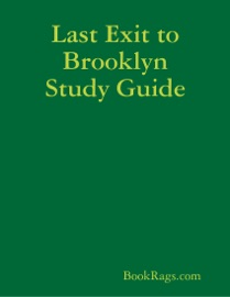 LAST EXIT TO BROOKLYN STUDY GUIDE