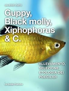 Guppy, Black Molly, Xiphophorus & C. Book Cover