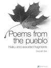 Poems From The Pueblo Haiku And Assorted Fragments