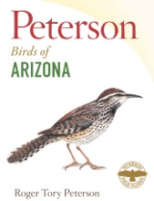 Peterson Field Guide To Birds Of Arizona