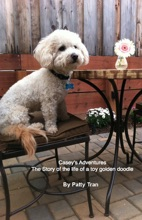 Casey's Adventures The Story Of The Life Of A Toy Golden Doodle