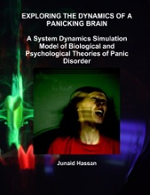 Exploring The Dynamics Of A Panicking Brain