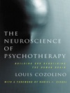 The Neuroscience Of Psychotherapy Healing The Social Brain Second Edition