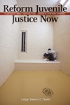 Reform Juvenile Justice Now A Judges Timely Advice For Drastic System Change