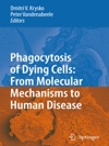 Phagocytosis Of Dying Cells