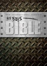 NIV, Boys Bible