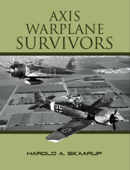 Axis Warplane Survivors