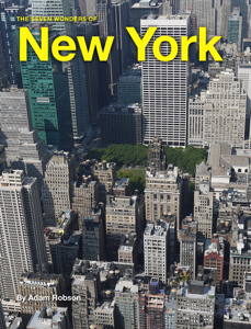 The Seven Wonders of New York Book Review