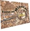 Focus On Minerals