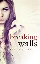 Breaking Walls book