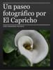 José Fernández-Pacheco - Un paseo fotográfico por El Capricho ilustración