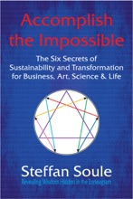 Accomplish The Impossible: The Six Secrets of Sustainability and Transformation for Business, Art, Science & Life