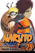 Naruto, Vol. 29 Book Cover