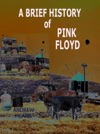 A Brief History Of Pink Floyd