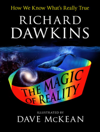 The Magic of Reality book