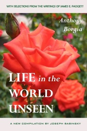 Life In The World Unseen
