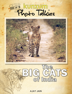 The Big Cats of India Book Review