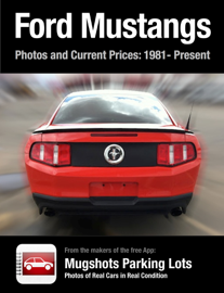 Ford Mustangs book