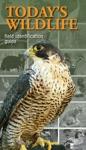 Todays Wildlife Field Identification Guide