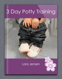 3 Day Potty Training book