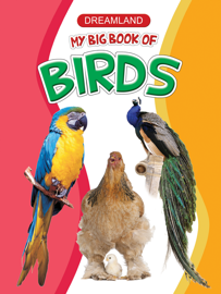 My Big Book of Birds book