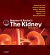 Brenner And Rectors The Kidney
