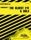 CliffsNotes On Morrisons The Bluest Eye  Sula