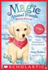 Poppy Muddlepup's Daring Rescue (Magic Animal Friends #1.5 - Special Edition)