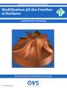 Christophe Tournier - ModГ©lisation 3D des Courbes et Surfaces illustration