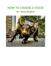 How To Choose A Stock book