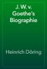 Heinrich Döring - J. W. v. Goethe's Biographie artwork