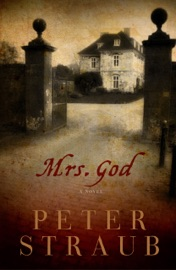 Mrs God: A Novel PDF Download