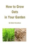 How to Grow Oats in Your Garden