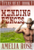 Mending Fences (Texas Heat: Book 1)