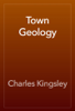 Charles Kingsley - Town Geology artwork
