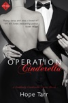 Operation Cinderella Entangled Indulgence