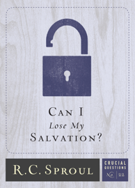 Can I Lose My Salvation? book