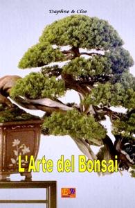 L'arte del Bonsai da Daphne & Cloe