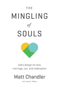 The Mingling of Souls Summary